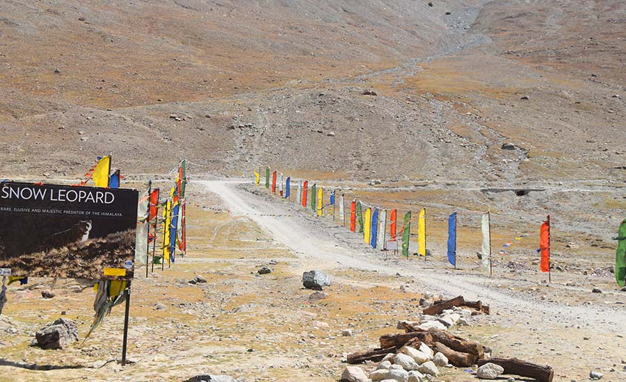 Majestic Trip to Spiti Valley - 10 Days Getaway